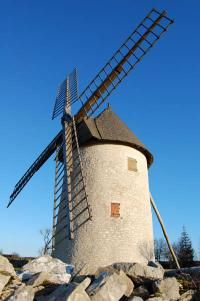 Burgundy Windmill